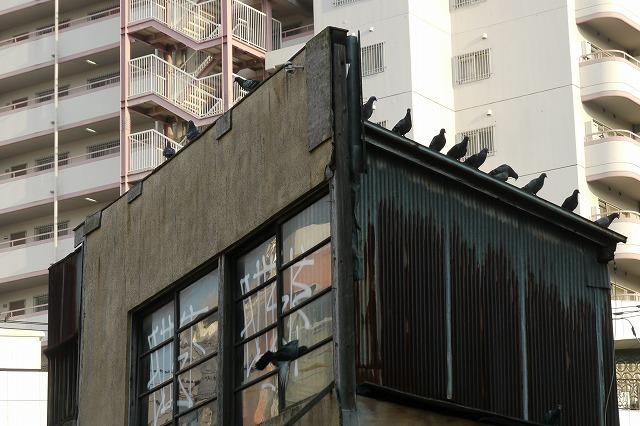 都市の空き地